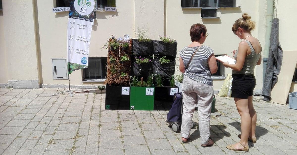 Workshop Grüne Wände